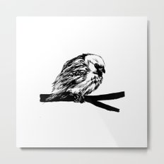 Bird Lover 2 Metal Print