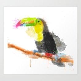 Watercolor Toucan Art Print