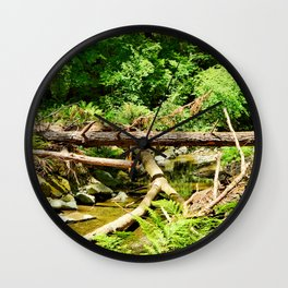 Muir Woods Study 14 Wall Clock