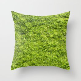 Field of fresh green grass Throw Pillow
