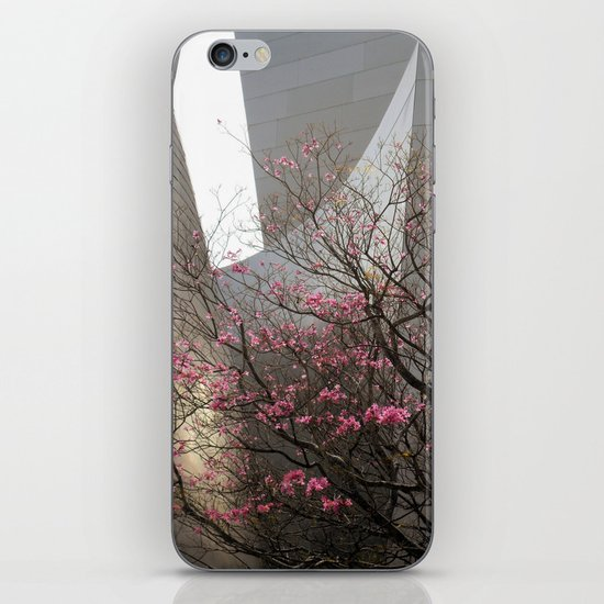 City Blossoms iPhone & iPod Skin