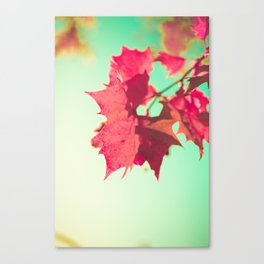 Red Maple Leafs Canvas Print
