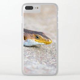 salamander close up Clear iPhone Case