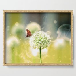Allium fantasy flowers with butterfly Serving Tray
