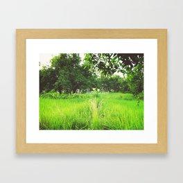 Let Them Live Framed Art Print