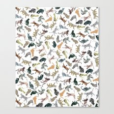 Nature Cats Canvas Print