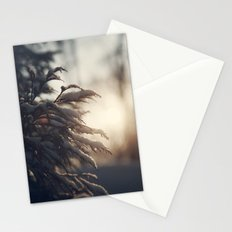 Winter Morn Stationery Cards