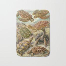 Ernst Haeckel Chelonia 1904 Poster Bath Mat