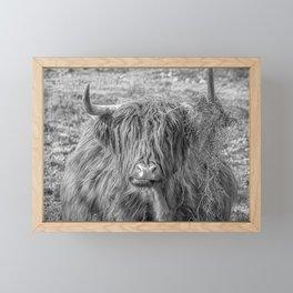 Black and white big Scottish Highland cow Framed Mini Art Print