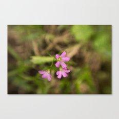 Filthy Flora - Fine Art Flower Photo Canvas Print