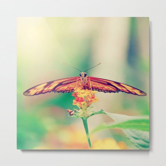 Butterfly retro Metal Print