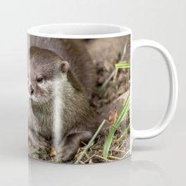 Sunning Otter Coffee Mug