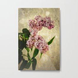 Vintage Lilacs in Bloom Metal Print