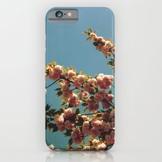 May iPhone 6s Slim Case