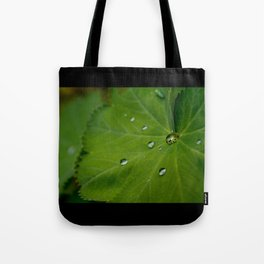 Water on Leaf Tote Bag