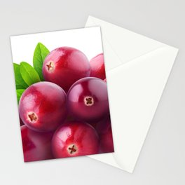 Cranberries Stationery Cards