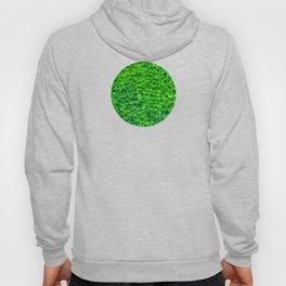 Deep Green Ivy Wall. Hoody