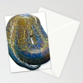 Snakes: Reticulated Python Stationery Cards