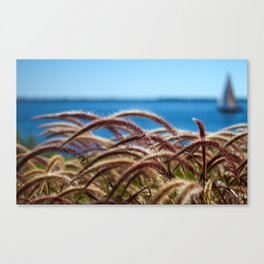 Sailing By Canvas Print
