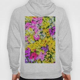 Meadow x Ultravibrant Hoody