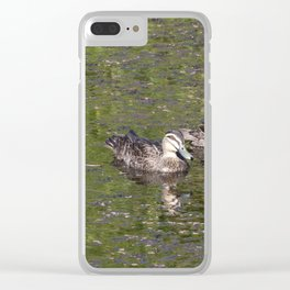 Wood Ducks on a pond Clear iPhone Case