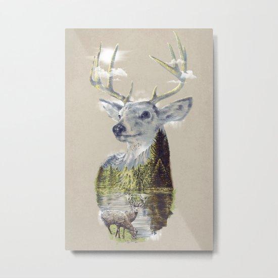 Mo'deer' Nature Metal Print