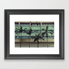 Palms in the city Framed Art Print