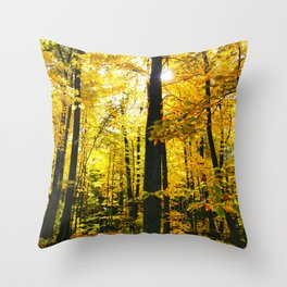 Sun Through Autumn Leaves Throw Pillow