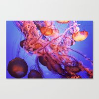 jellyfish Canvas Prints featuring Jellyfish by Randy Aquilizan