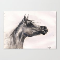 Horse Painting, horse lover gift, stallion painting, cowgirl gift Canvas Print