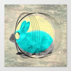 hypnotic rabbit Canvas Print