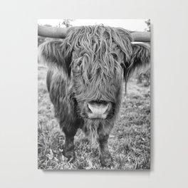 highland cow b&w Metal Print
