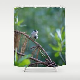 Little Guy in the Forest Shower Curtain