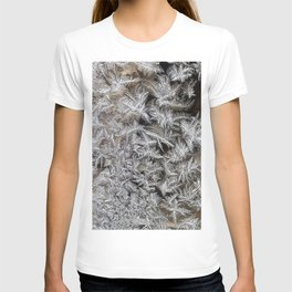 Ice | Glace 1 T-shirt