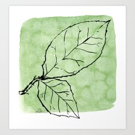 Two Leaves on Green Art Print