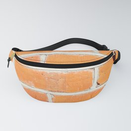 The poetry of ordinary things Fanny Pack