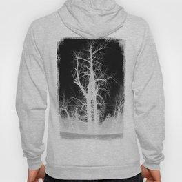 Contrast Tree Hoody