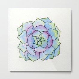 round succulent Metal Print