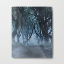 Very cold foggy morning at Dark Hedges Metal Print