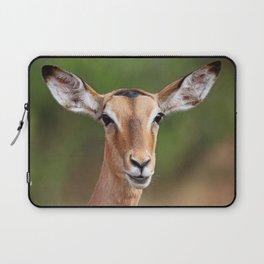 Female Impala, Africa wildlife Laptop Sleeve