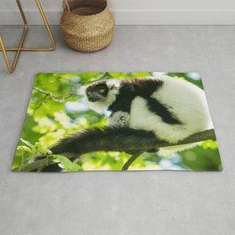 Black-and-white Ruffed Lemur Rug