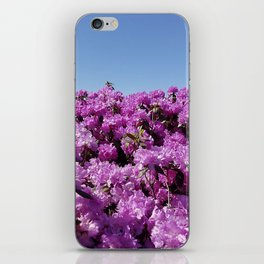 "View of ""Mount Rhodendron"" on a clear day iPhone Skin"
