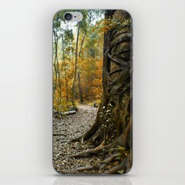 Bunya treasure iPhone Skin