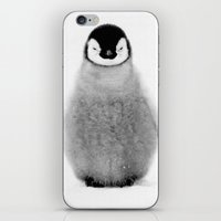penguin iPhone & iPod Skins featuring PENGUIN by Ylenia Pizzetti