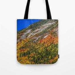 Foliage on the Mountain Tote Bag