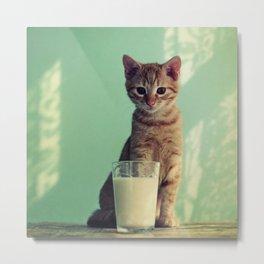 Kitteh haz milk Metal Print