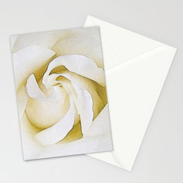 247 - one white rose Stationery Cards