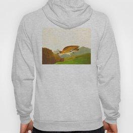 Rocky Mountain Plover Bird Hoody