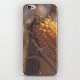 Corn Maize iPhone Skin