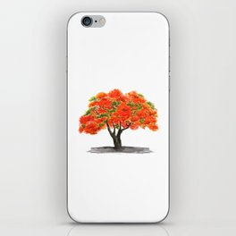 flame of the forest tree iPhone Skin